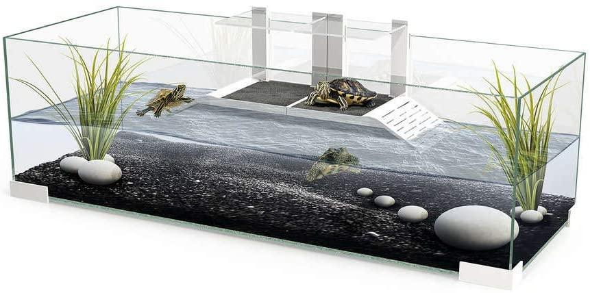 acuarios para tortugas grandes